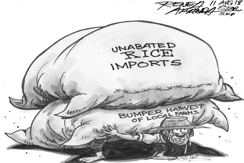 EDITORIAL- Flood of imports