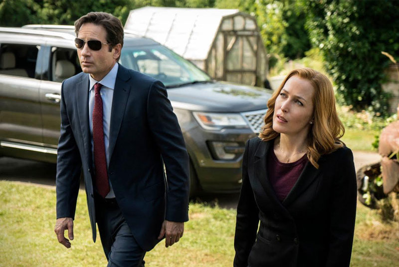 David Duchovny as Fox Mulder and Gillian Anderson as Dana Scully