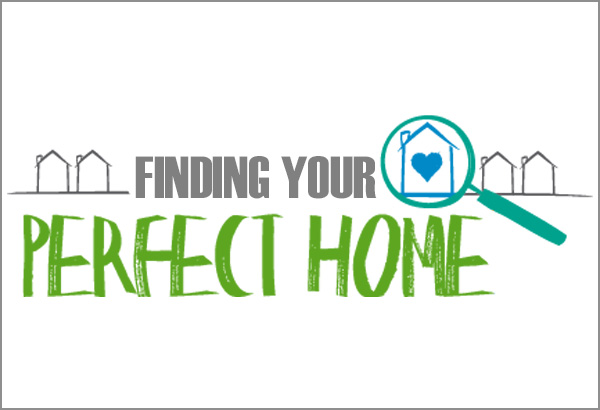 top five tips in finding your perfect home real estate