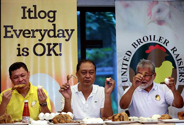 Broiler raisers eat chicken and eggs during a press conference in Quezon City yesterday to show that not all poultry products in the country are affected by avian flu.  MICHAEL VARCAS