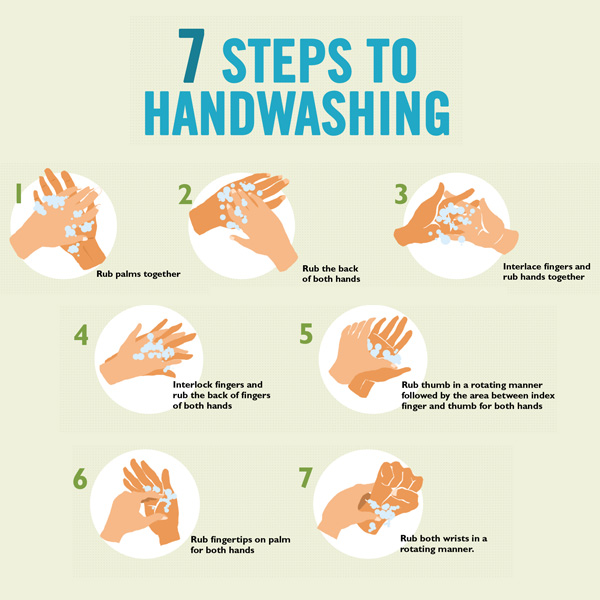 Handwashing Procedure Food Service