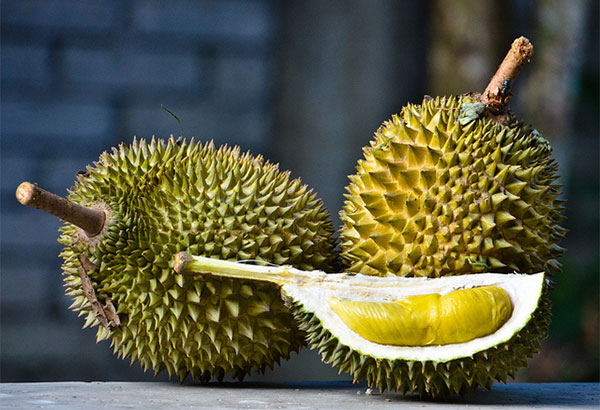 http://media.philstar.com/images/the-philippine-star/lifestyle/paandar/durian-fruit.jpg