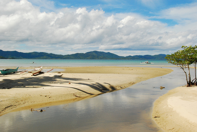 palawan case essay Explore palawan holidays and discover the best time and places to visit | nothing defines palawan more than the water around it with seascapes the equal of any in southeast asia, and terrestrial and aquatic wildlife, the philippines' most sparsely populated region is also the most beguiling.
