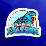 <p>Adamson University <strong>Soaring Falcons</strong></p>