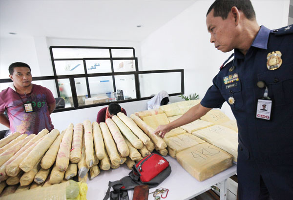 CIDG director Chief Superintendent Victor Deona inspects the P2 million worth of marijuana seized from Moises Simsim and his son in Balintawak, Quezon City yesterday. MICHAEL VARCAS