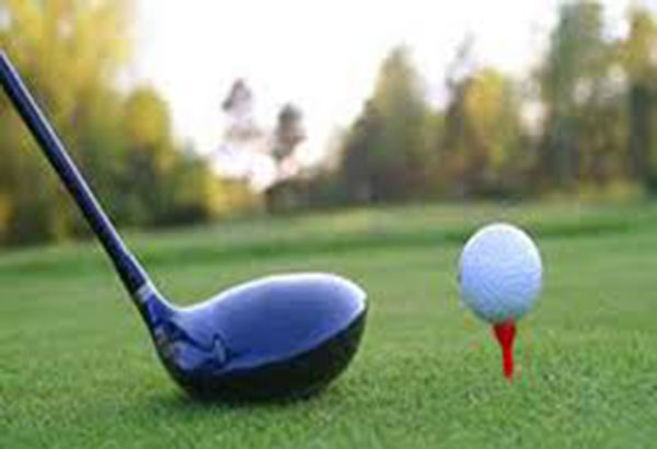 Gabriel Enriquez and Domingo Molinar combined for a 166 to capture the overall championship in the 38th Jose Yulo Memorial golf tournament. Philstar.com/File Photo
