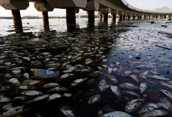 water pollution in the philippines I facts about water water pollution in the philippines primarily in agricultural in shortage/pollution and industrial sectors the philippines.