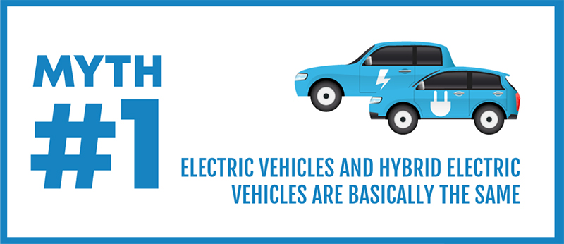 Truth or myth? Let's see how many of these hybrid myths can you bust