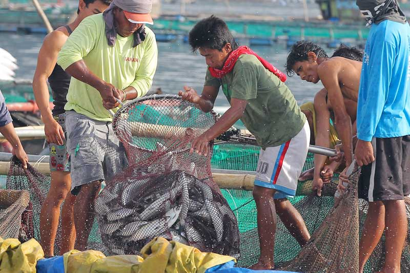 Gov't urged to issue 'rules of engagement' for West Philippine Sea fishermen
