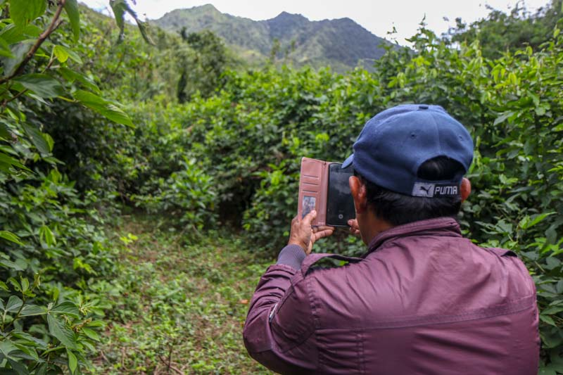 A man holds his cell phone in a wooded area in the Philippines.