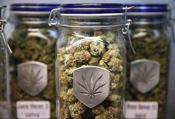Medical  marijuana works,  says Gloria Arroyo