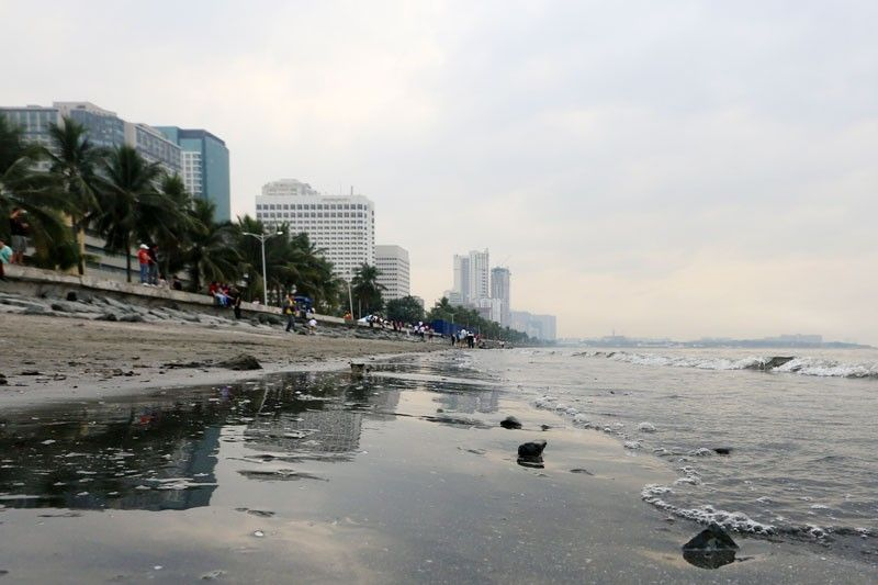 New Manila Bay polluters named