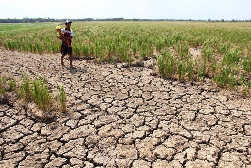 Drought due to El Niño to hit more provinces