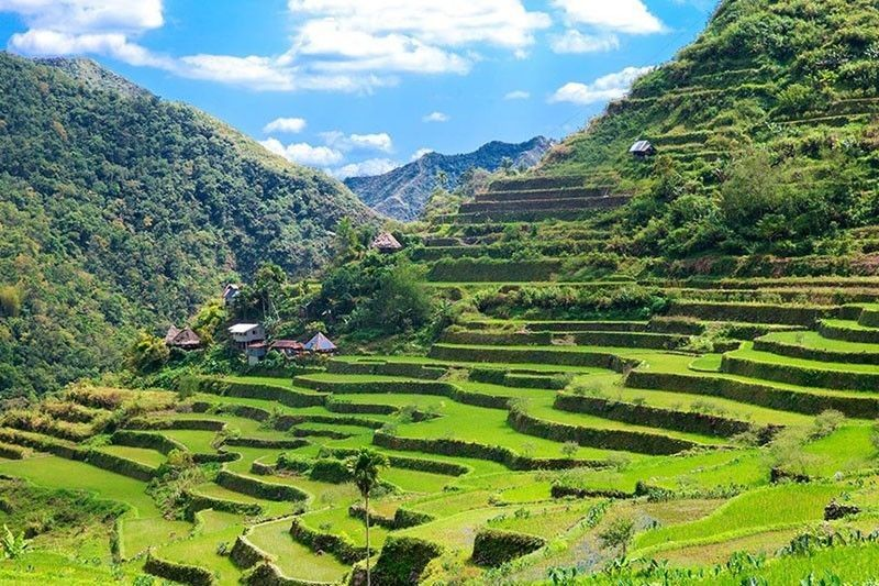 Image result for philippines rice terraces