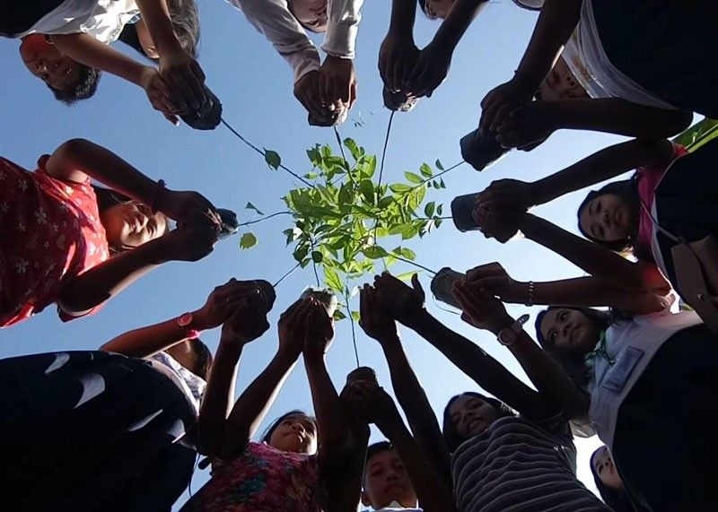 Elementary, high school students plant trees and move up
