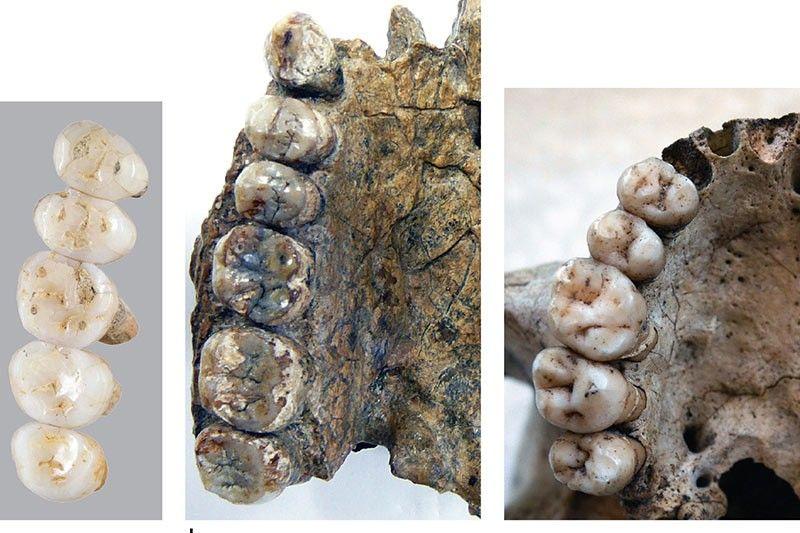 Unknownhuman species that lived 50,000 years ago found in Philippines