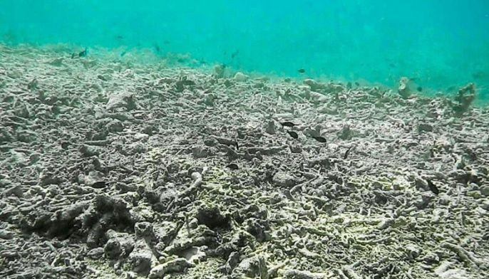 This photo dated February 2016 shows a reef flat approximately 1.5 nautical miles away from Pag-asa Island destroyed by Chinese clam harvesters.
