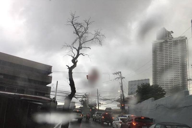 'Falcon' to dump rains in Cebu