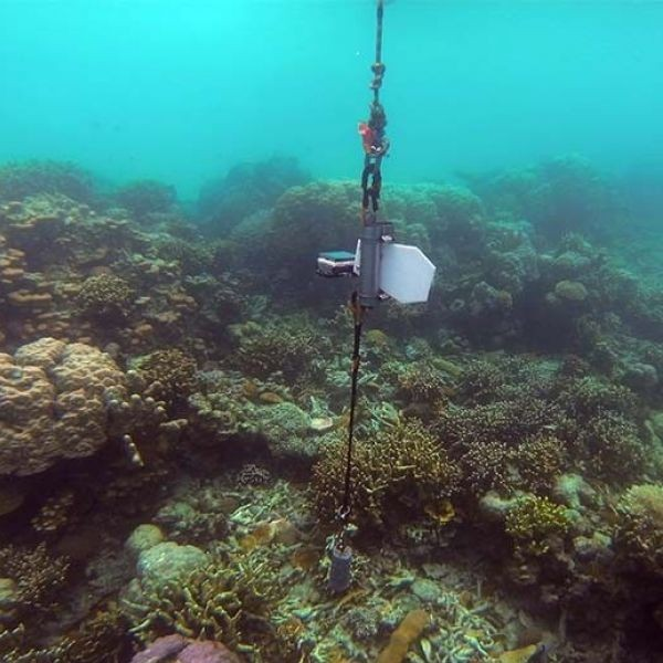 This image shows A Rapid Assessment Instrument for Coastal Benthic Habitats or ARAICoBeH, seen as an alternative to scuba diving method.
