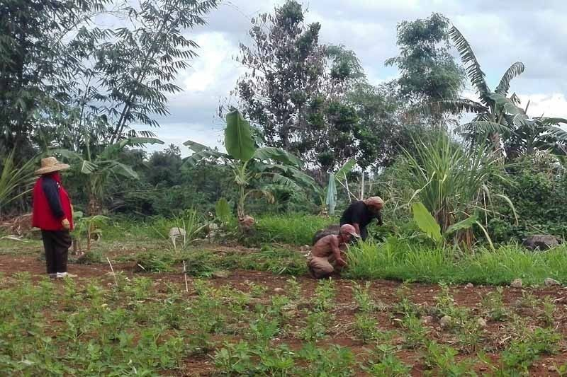 Duterte admin slowest in implementing land reform, Task Force Mapalad claims