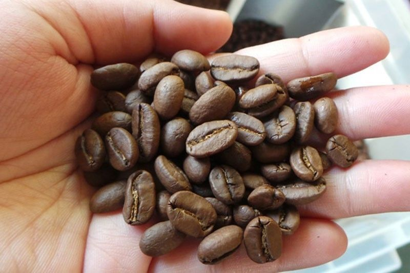 Coffee farms worst hit by Taal ashfall