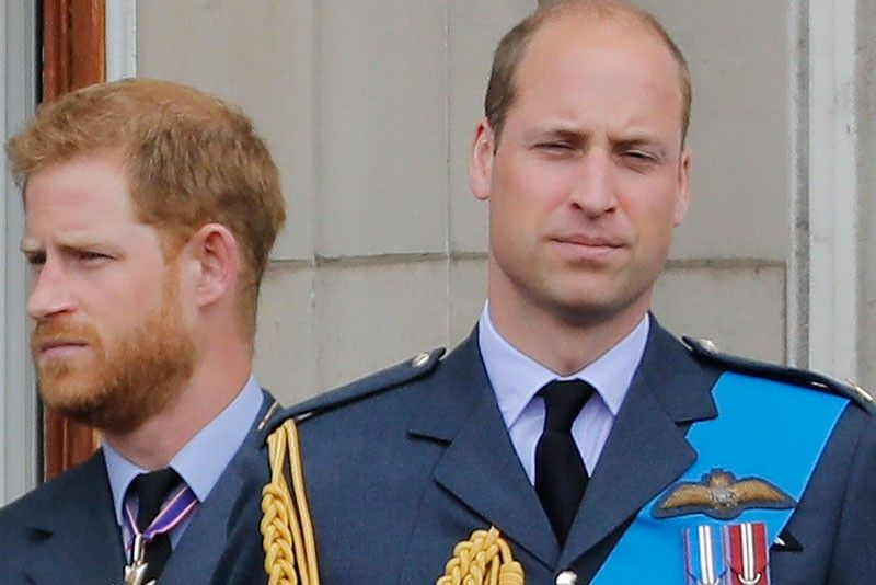 Prince William, Prince Harry slam 'false' story about their relationship