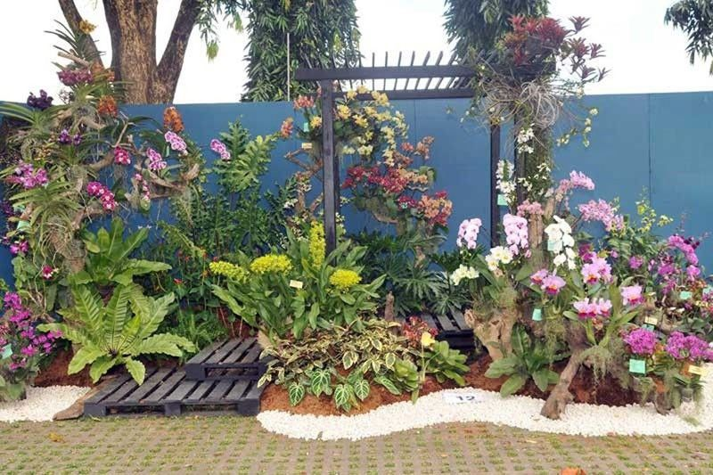 Local flowersblooming with global prospects