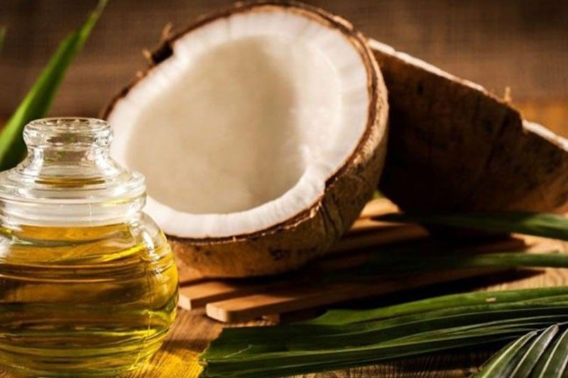 Virgin coconut oil trials for COVID patients OK�d