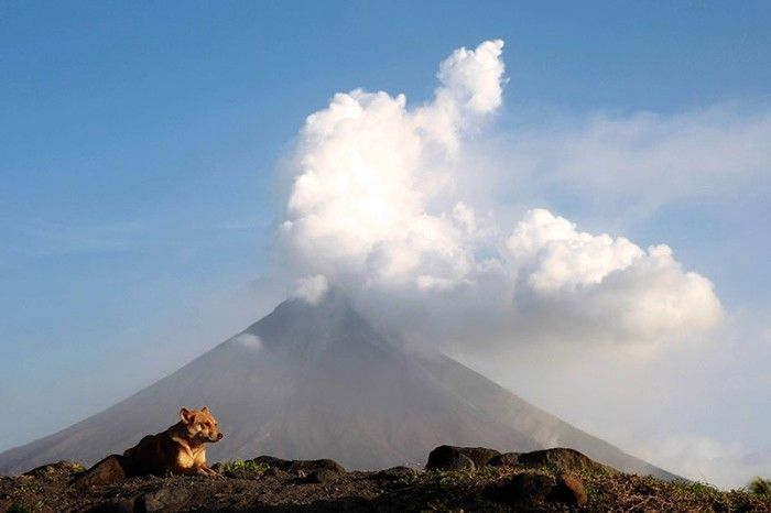 Alert Level 2 still up over Mayon Volcano after magmatic activity recorded