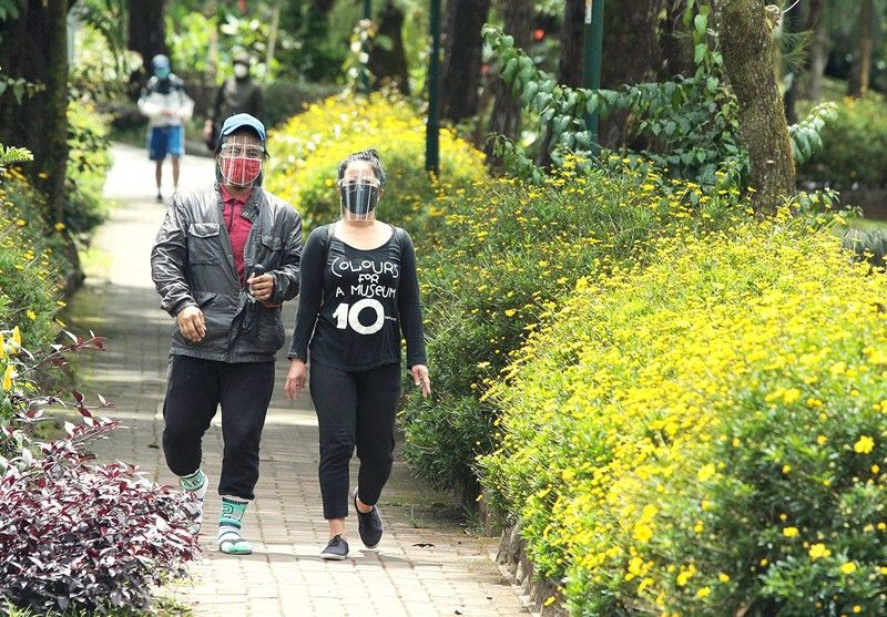 �Plantdemic:� Reinvigorated Baguio parks hit by plant thieves