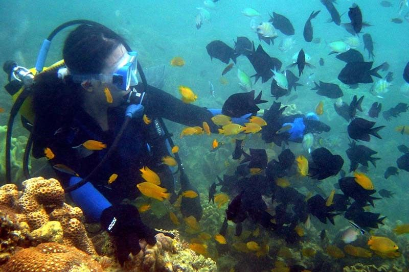 Family calls for realignment of Davao-Samal bridge project to spare coral reefs