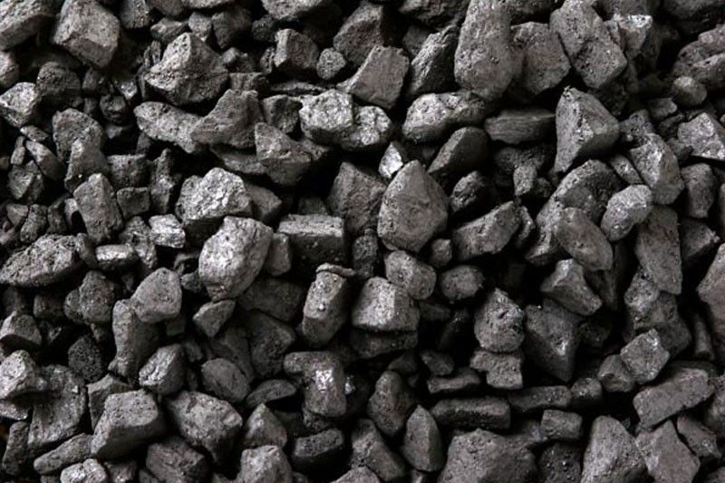 PNOC-EC completes bid for Sibugay coal block