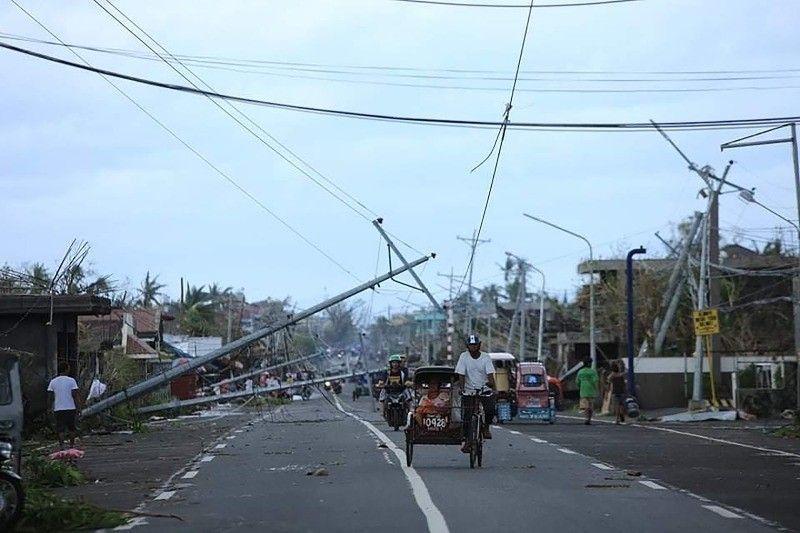 typhoon rolly