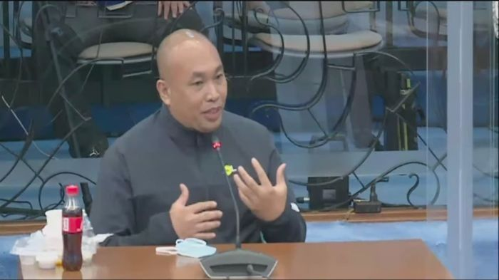 Casiño, artists slam �baseless� accusations at Senate hearing on red-tagging