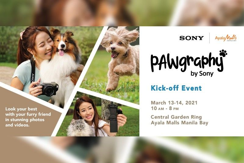 Sony offers FREE photo, video tutorials for pet owners