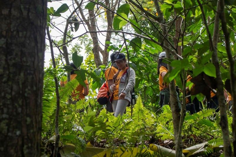 Revisiting Ayala Land�s carbon forests and 2022 carbon neutrality goal