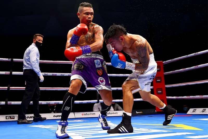 Nietes outpoints Carrillo in triumphant return