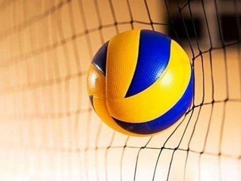 Brazilian coach tapped to help SEAG-bound women's volleyball team