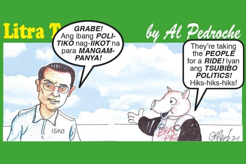Tsubibo Politics!