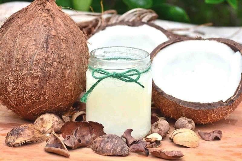 Coconut industry renews calls to tap VCO vs COVID-19
