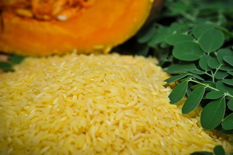 Golden Rice to herald new age of GMO food